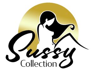 Ottawa logo creation service